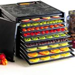 10 Best Food Dehydrator Review in the US 2021
